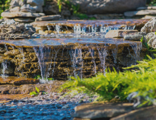 7 Reasons To Add A Water Feature